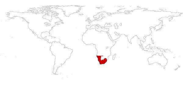 南アフリカランド【ZAR】